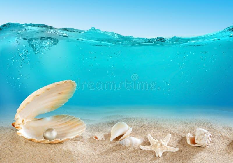 水下的珍珠 免版税库存照片