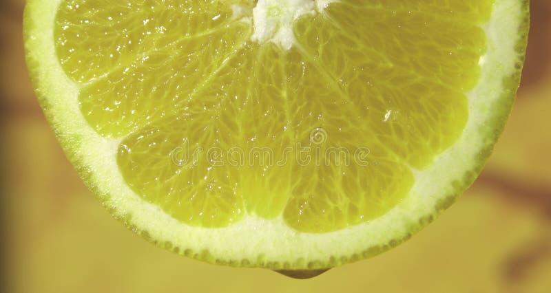 下落柠檬 免版税库存图片