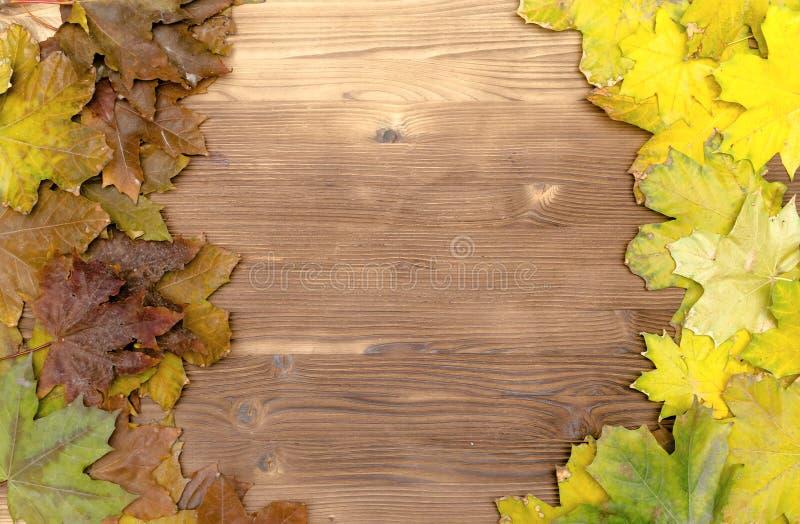 下落的秋天在木板表面背景离开与拷贝空间 图库摄影