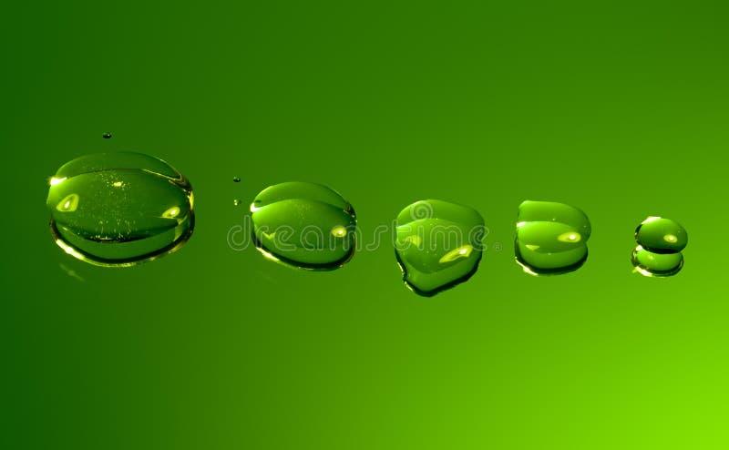 下落绿化被反射的水 免版税库存图片