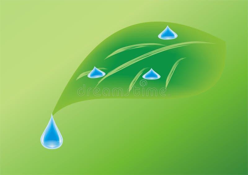 下落绿色叶子水 库存例证