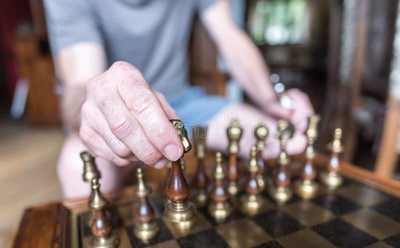 下象棋者 免版税库存图片