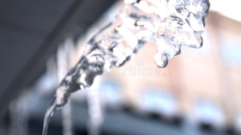 下跌从大熔化的冰柱的水下落垂悬在屋顶在春天 ?? 特写镜头视图冰柱熔化 免版税库存照片