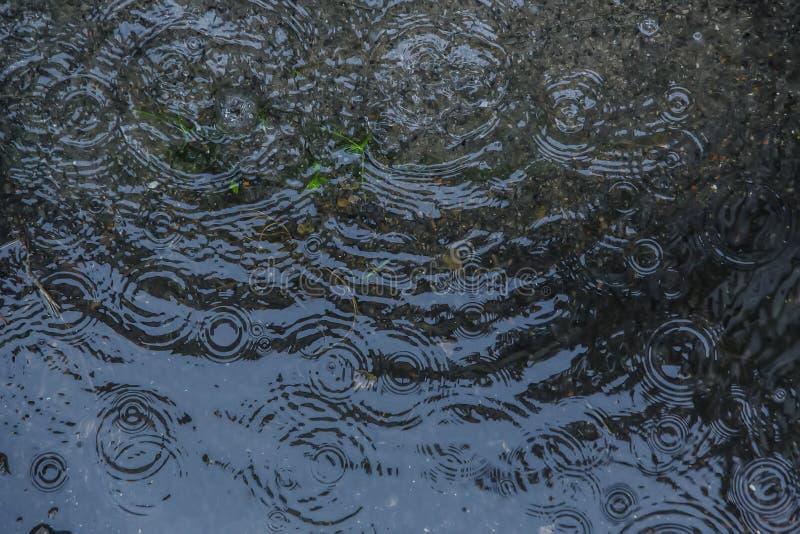 下跌雨的下落在水池 免版税库存照片