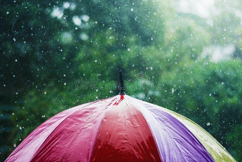 下雨下跌在五颜六色的伞和绿色上的下落 图库摄影