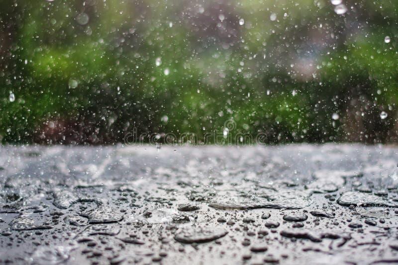 下雨下跌在有绿色自然的黑板上的下落 免版税库存图片