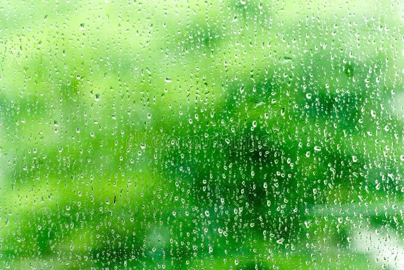 下雨在玻璃窗的下落浮出水面有绿色背景或te 免版税库存图片