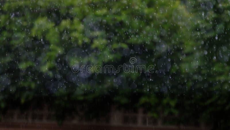 下雨的模糊的照片 免版税库存图片