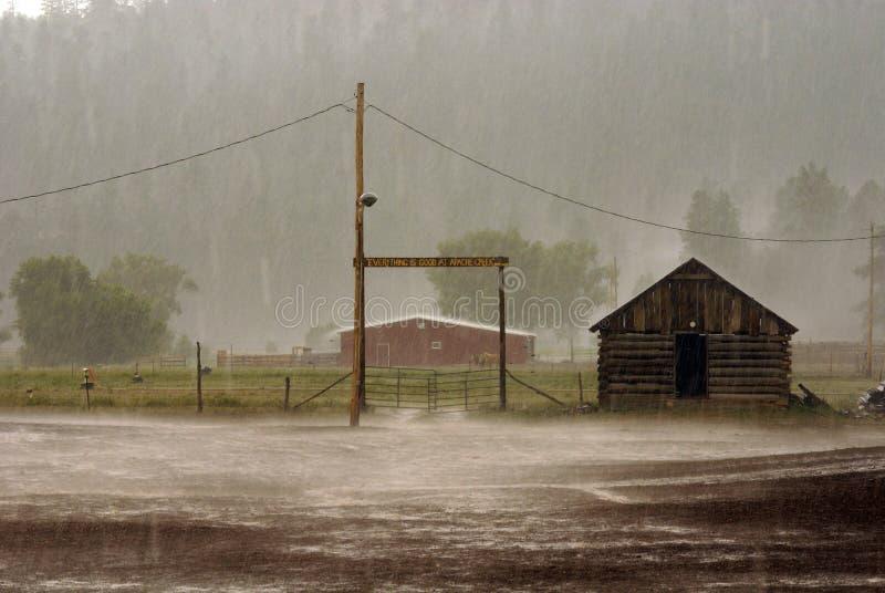 下雨 库存图片
