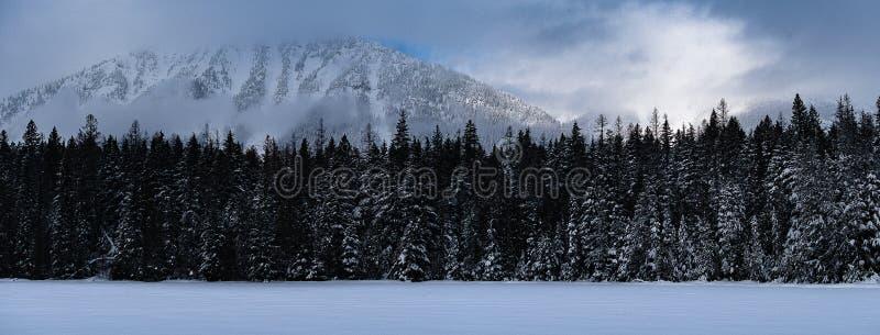 下雪在冬天的冰川国家公园 免版税图库摄影