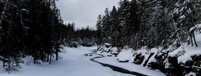 下雪在冬天的冰川国家公园 库存图片