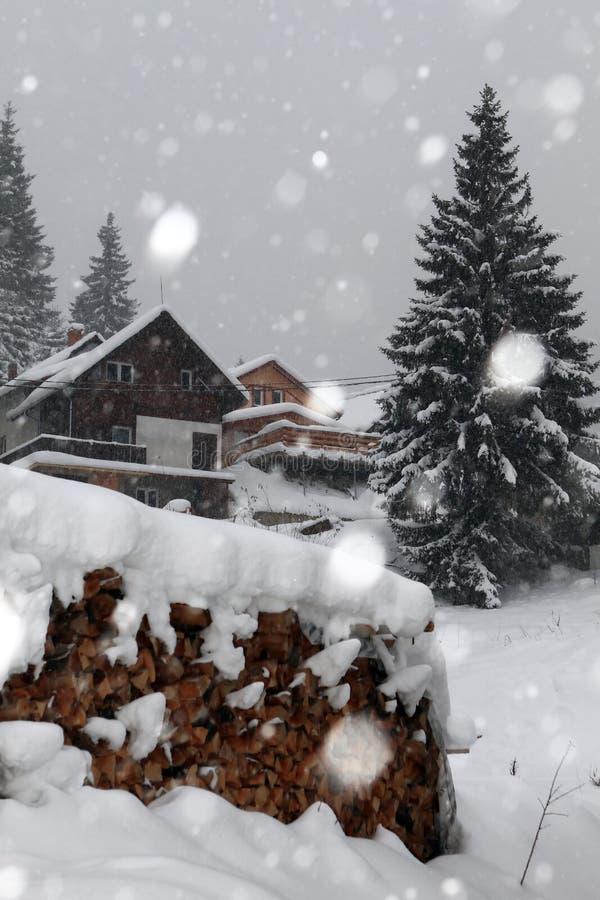 下雪在冬天 免版税库存图片