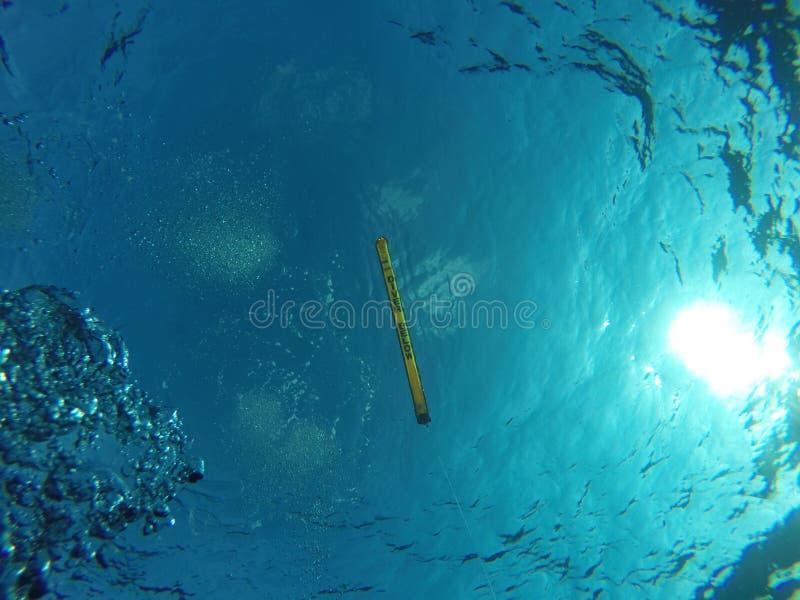 下面潜水者 免版税图库摄影
