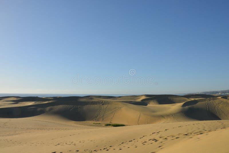 下面道德的Maspalomas沙漠gran卡纳里亚,西班牙海岛  免版税库存图片