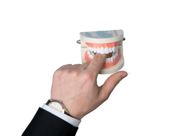 下颌咬住手指 免版税图库摄影