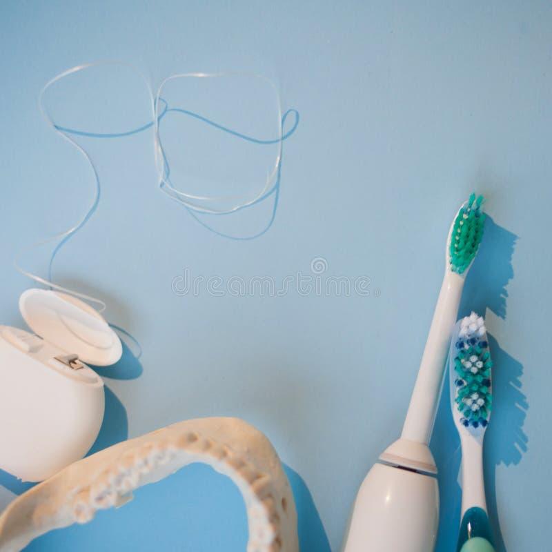 下颌的刷子、模型和在蓝色背景的牙线 库存照片