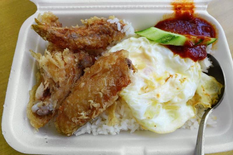 不健康的种族亚洲膳食去掉 免版税库存照片