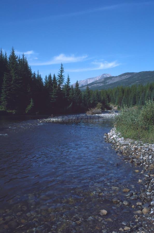 不列颠哥伦比亚省山被遮蔽的河岩石 库存照片
