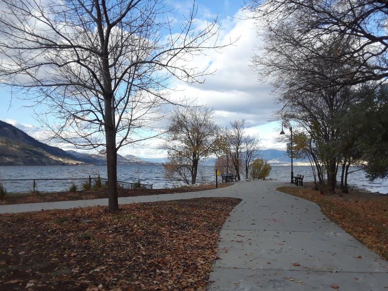 不列颠哥伦比亚省彭蒂克顿奥卡纳根湖公园 免版税图库摄影