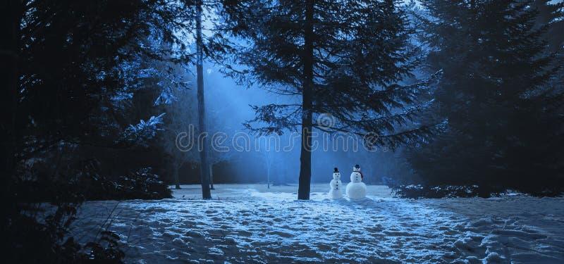 不可思议的冬天场面在有两个雪人的森林 库存照片