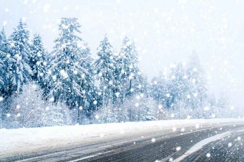 不可思议的冬天路、积雪的树和落的雪 免版税库存照片
