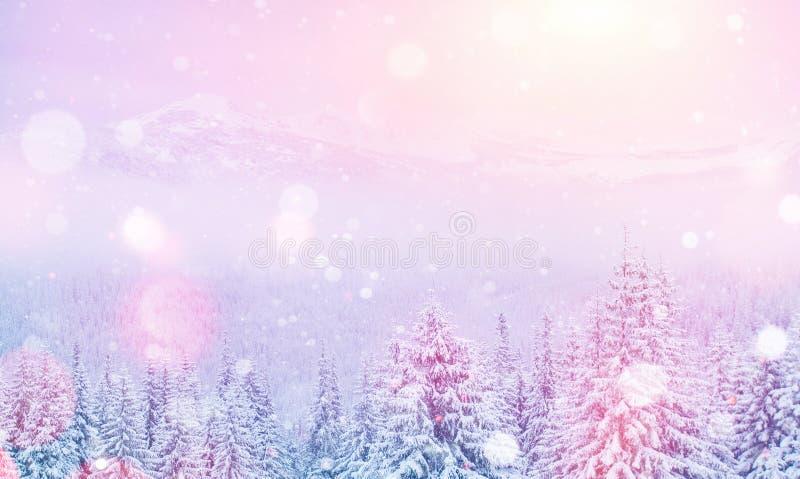 不可思议的冬天风景,与某一软性的背景突出a 图库摄影