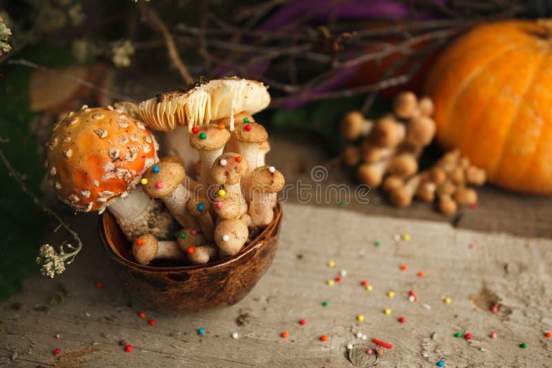 不可思议的童话党桌装饰,蘑菇用在杯子的糖果店在木背景,毒害毒性食物,万圣夜假日 免版税库存照片