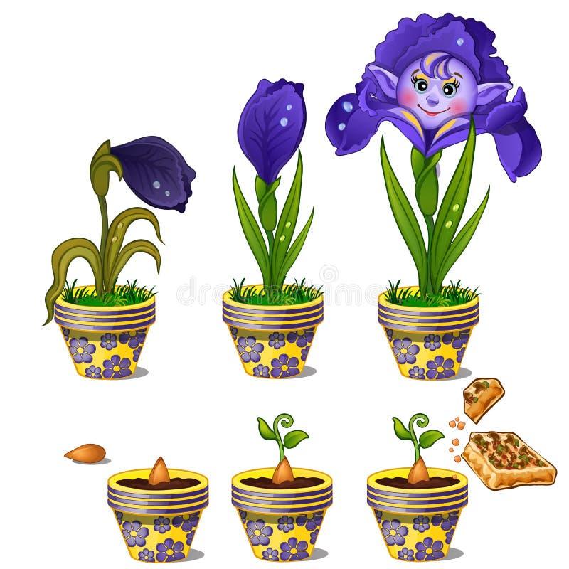 不可思议的花成长与人面的 库存例证