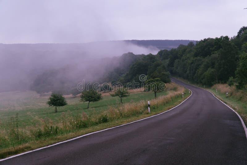 不可思议的路在有雾的一个神奇森林里 库存照片