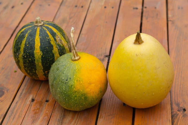 不同的品种三个南瓜木表面上的 免版税库存图片