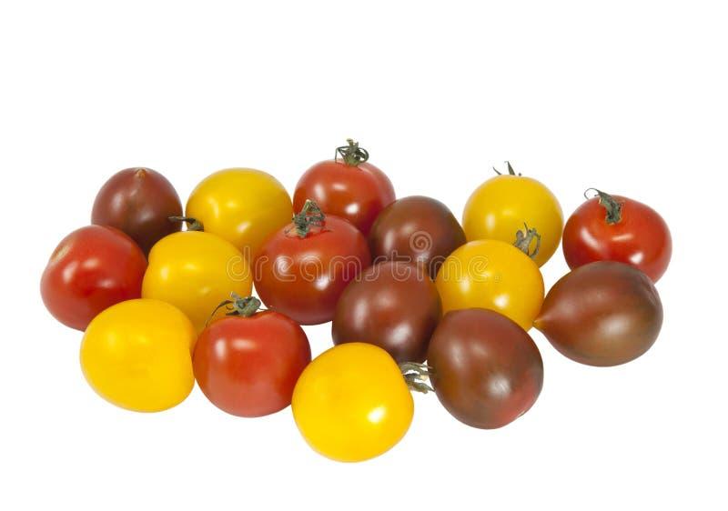 不同的品种多彩多姿的蕃茄  免版税库存图片