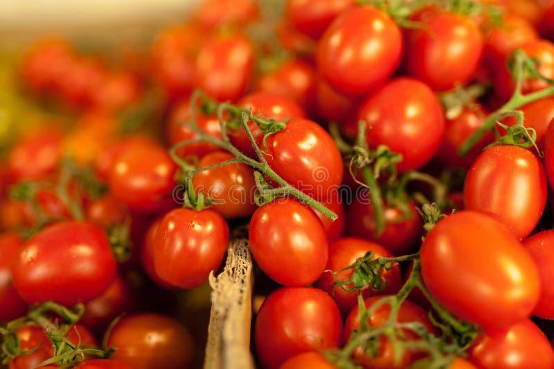 不同的品种新鲜的蕃茄在农夫市场上 免版税库存照片
