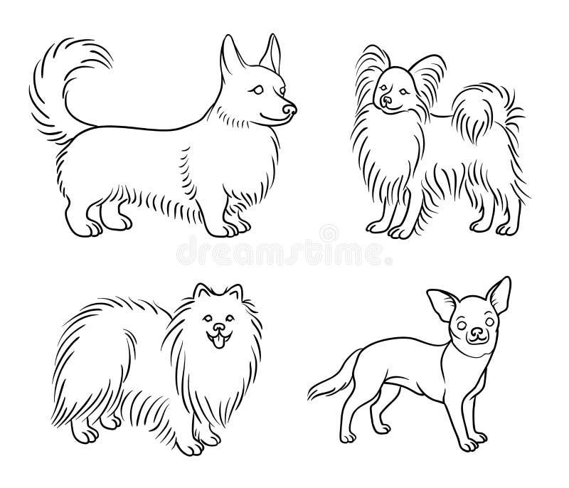 不同的品种狗在概述set6 -传染媒介例证的 皇族释放例证
