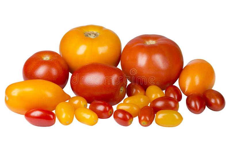 不同的品种黄色和红色蕃茄  免版税库存照片