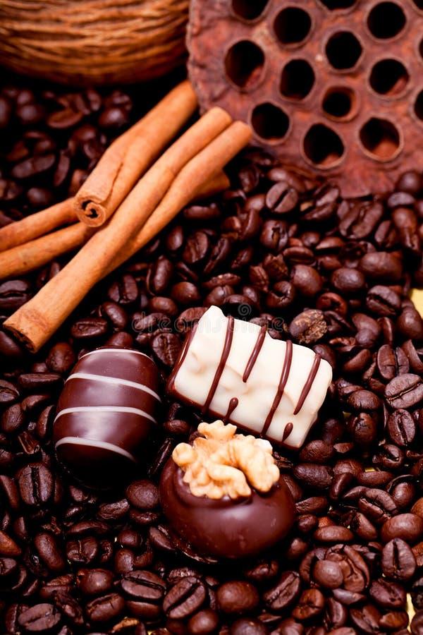 不同的巧克力果仁糖truffels的汇集 免版税库存图片