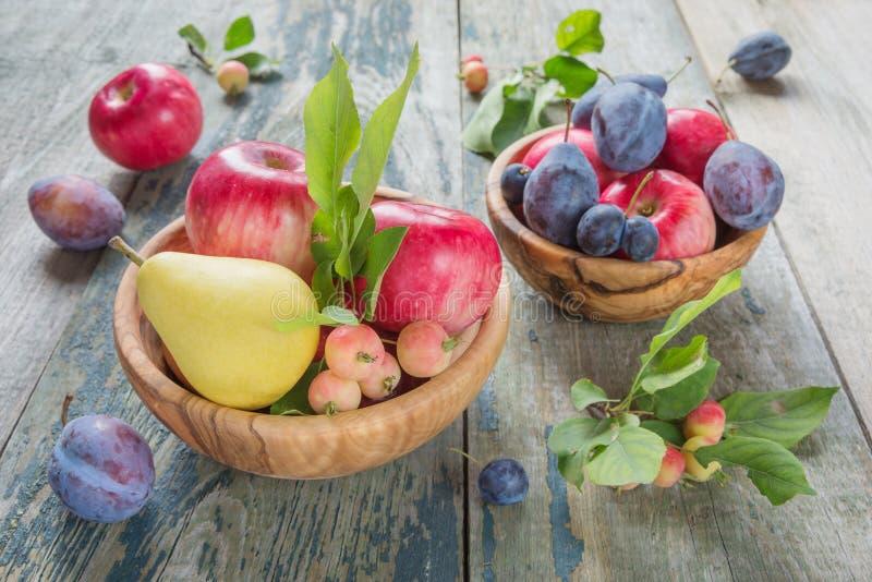 不同的果子和莓果富有的收获  库存照片
