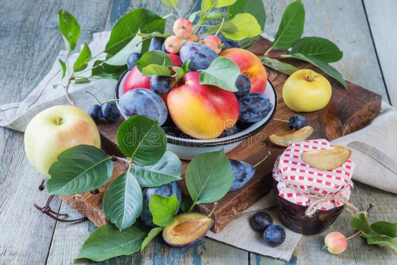 不同的果子和莓果收获  免版税图库摄影