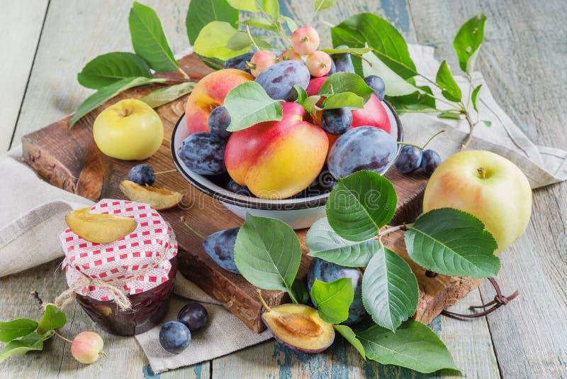不同的果子和莓果收获  免版税库存照片