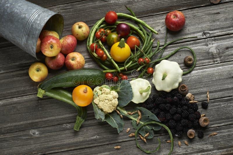 不同的水果和蔬菜 免版税库存照片
