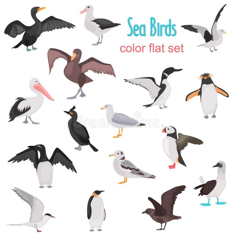 不同的海鸟上色平的象集合 皇族释放例证
