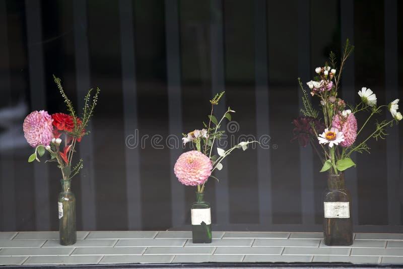 不同的种类大丽花和玉树叶子花束在葡萄酒瓶作为商店窗口装饰 库存图片