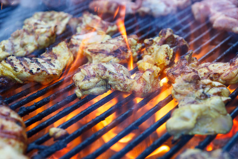 不同的种类许多片断肉烤 免版税库存照片