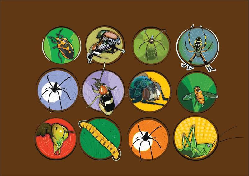 不同的类型昆虫例证传染媒介 免版税库存照片