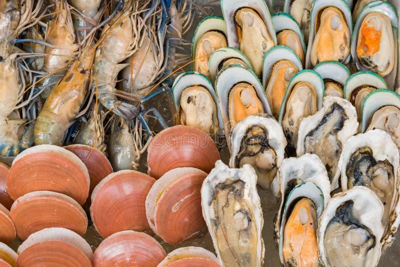 不同的类贝类和虾 免版税库存照片