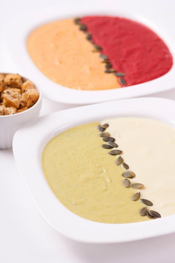 不同的色的纯汁浓汤汤 免版税库存图片
