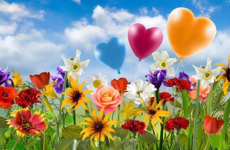 不同的花美丽的花束在天空背景的 免版税库存照片