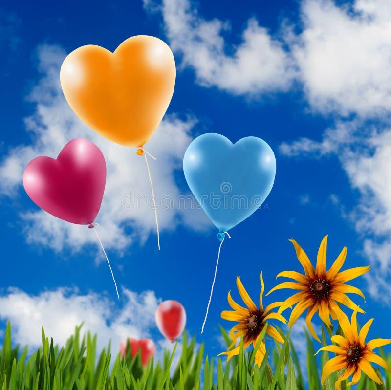 不同的花美丽的花束在天空背景的 图库摄影