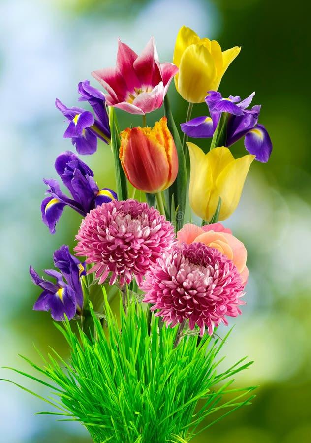 不同的花美丽的花束在被弄脏的背景的, 库存照片