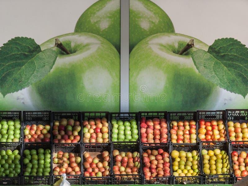 不同的颜色、种类和品种苹果待售在市场上在塞尔维亚,有苹果的图片的在背景中 库存照片