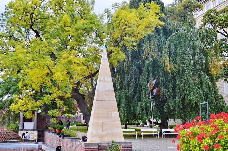 不同的颜色两棵树  免版税库存照片